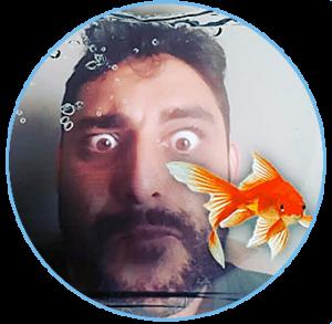 Chris-aquarium