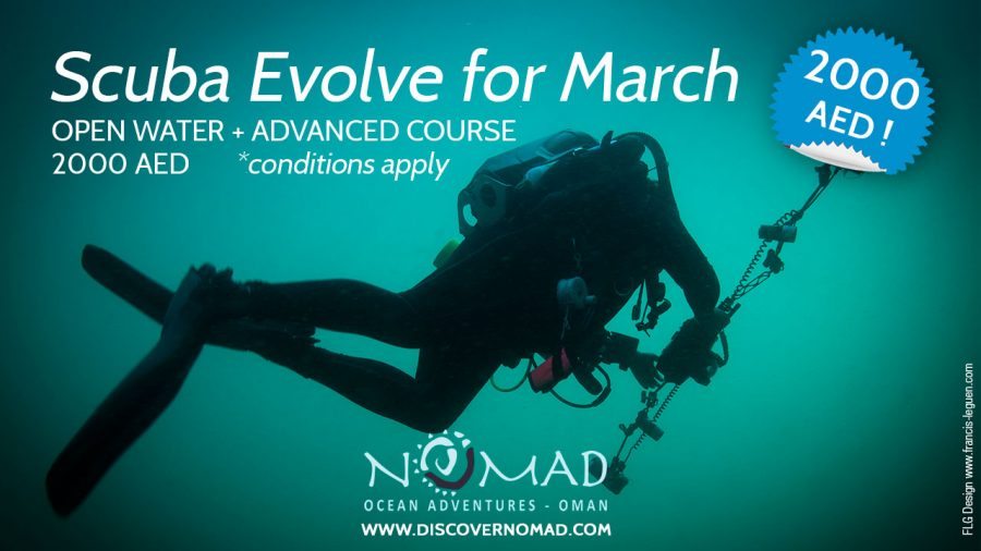 Introducing Scuba Evolve : Combine diving courses and save money!